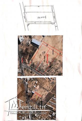 Terrain à vendre Sfax route Aéroport