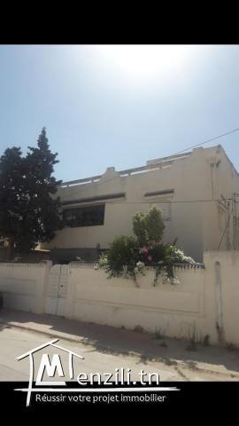 Villa 536m2