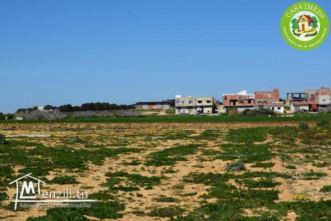 أراضي في قليبية للبيع فيها شهادة ملكية + صالحة للبناء