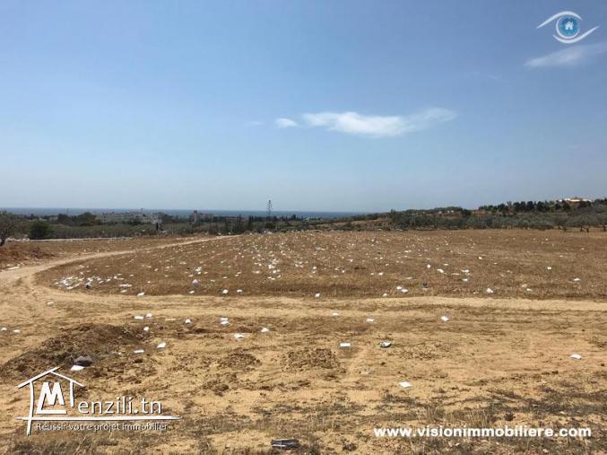 Vente terrain Panorama Hammamet-nord