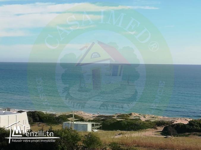Terrain vue sur mer à haouaria plage tél: 26233701