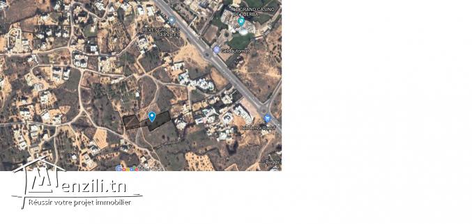 Terrain  près de la zone touristique à Djerba (Mezraya près de l'hotel Sun Club)