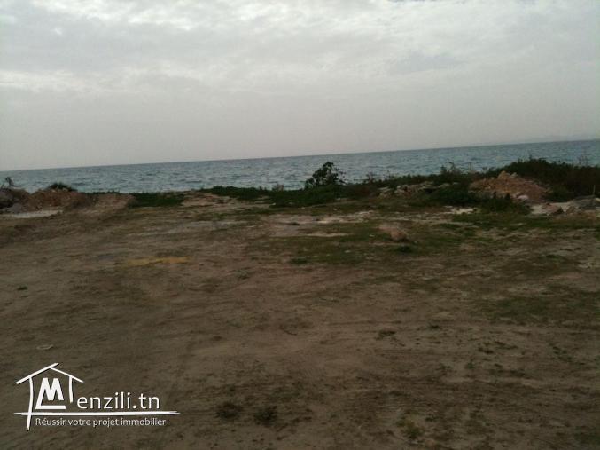 terrain titré 1600 m² à HERGLA pied dans l'eau