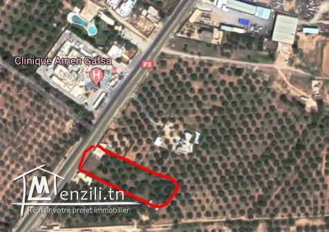 terrain 5330 sur la route principale Gafsa Tozeur