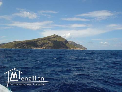 terrain avec vue magnifique sur mer