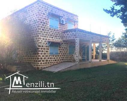 Senia de 5000 m² avec une villa de 300 m² à Rtiba