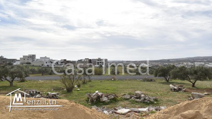terrain à jardin d' el menzah