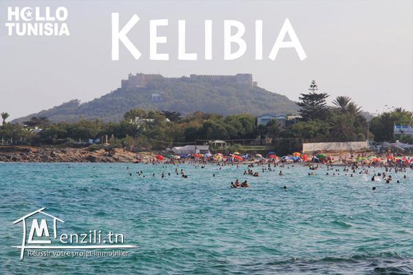 terrain cité kelibia quartier riadh zone calme