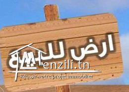 Terrain a vendre à Raoued de 520 m2