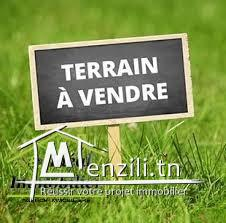 A vendre terrain de promotion à Cité El Ghazela