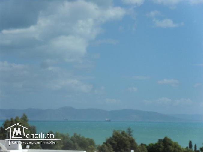 Villa Front mer à Carthage