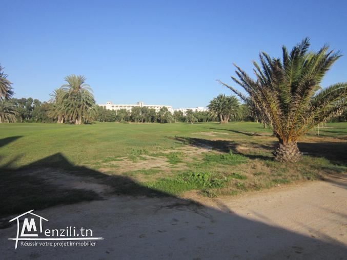 terrain de 1037 m² de bons voisinages à monastir cité PALM FLEX ( en face el mouradi SKanes)