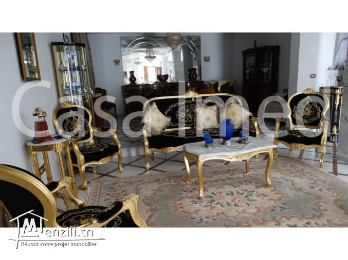 une  belle villa a cité romena