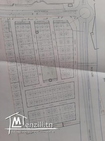 Des lots de terrains à Hammamet Nord
