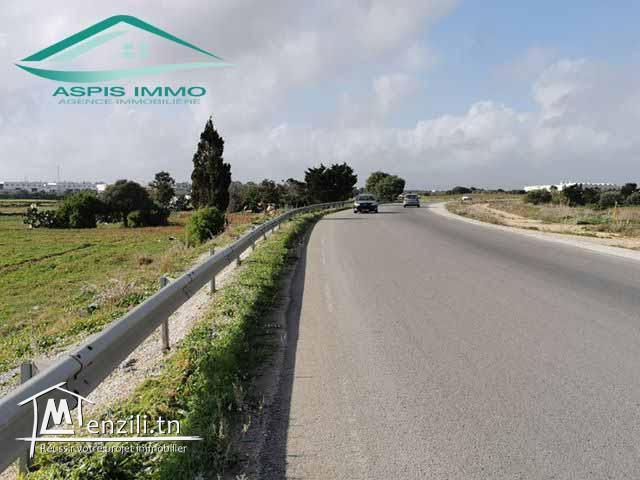 Terrain 1360 m² sur la route principale de ceinture kelibia