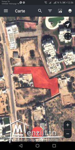Surface 1955 m² titré