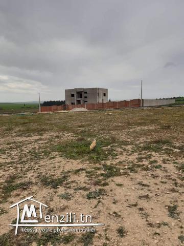 قطعة ارض للبيع بالمحمدية