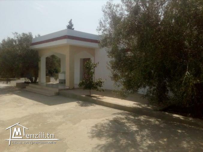 villa menchar