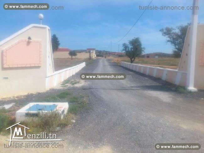 A vendre Terrain à Oued Elil