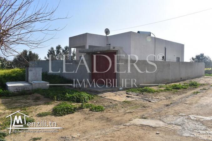 une maison à sidi_hamed_hammamet S+3 ▶️Prix :185MD contactez-nous sur le +216 27 246 317