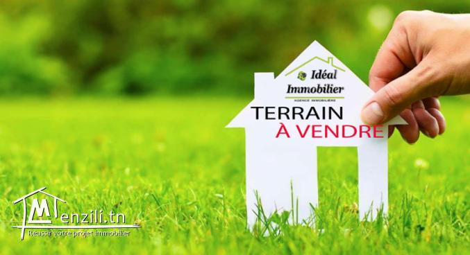 A vendre trois lots de terrain à Mornaguia