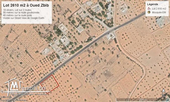 Terrain  2650 m2 À Oued Zbib - Jamaa Ellil - Djerba