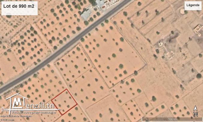 Terrain de 990 m2 à Oued Zbib Jamaa Ellil – Djerba