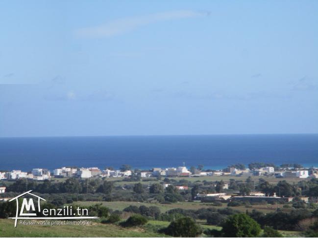 Terrain vue de mer