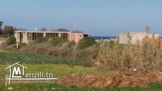 Terrain pres de la plage d'El Haouaria de 2min a pieds