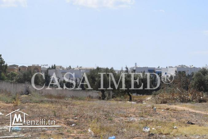 terrain a vendre de 300 m2