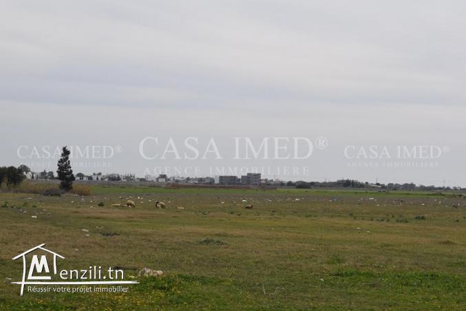 terrain a vendre de 500 m²