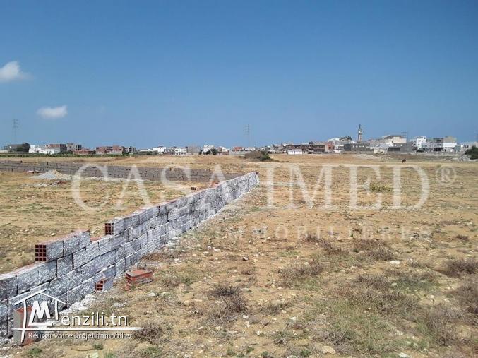 أرض صالحة للبناء في وسط البلاد قليبية 250 م² ب-60 مليون