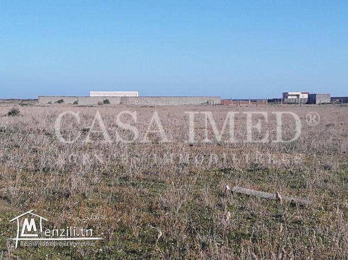 terrain agricole de 2000 m²