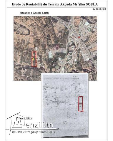 TERRAIN AKOUDA 4610 m² CONSTRUCTIBLE FACE BAIE DES ANGES.