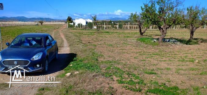 قطعة أرض للبيع تبعد 6 كلم على ياسمين الحمامات