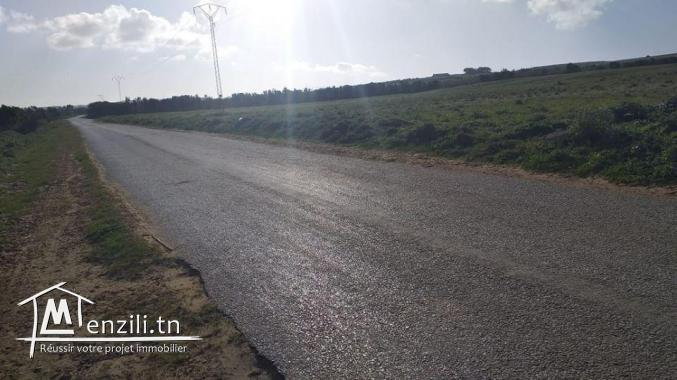 Terrain agricole à Tamozrate Kélibia