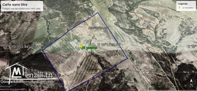 23 hectares sénia