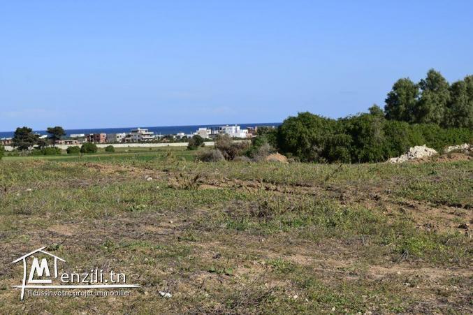 Terrain à kerkouane, pas loin de la plage