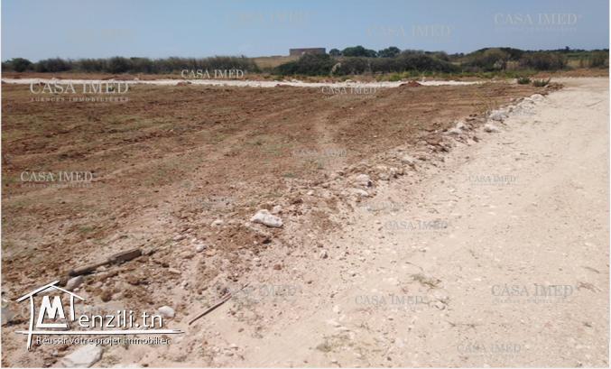 أرض للبيع في الهوارية مساحة 250 م ²