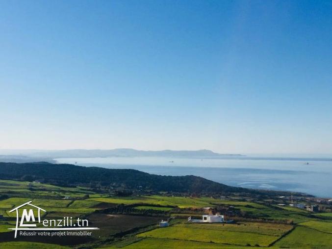 Terrain à Bizerte de 6291 m2