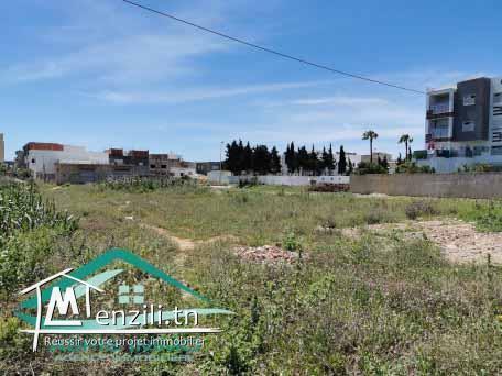 terrain d'habitation 150 m² à cité tahert kelibia