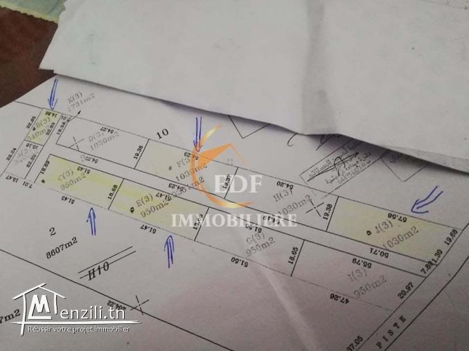 Réf 3097:  5 lots de Terrain pour maison de Campagne,Hammamet Sud