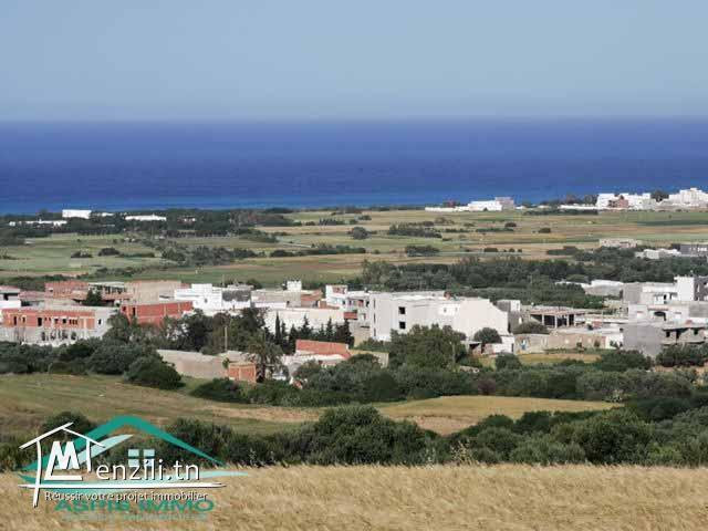 Terrain d'habitation 1000 m² à hammem jabli kelibia