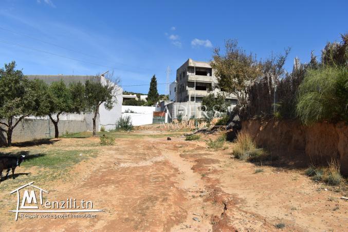 AV un terrain situé à kharouba Hammamet Nord, en face carrefour market