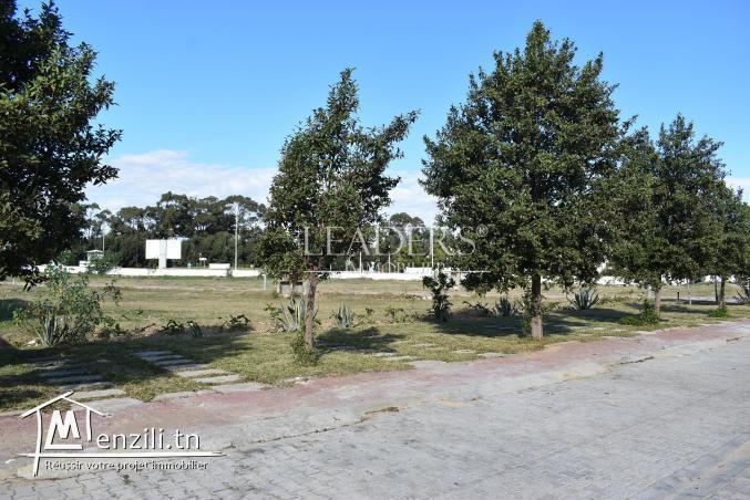 AV un terrain situé à Besbasia Hammamet