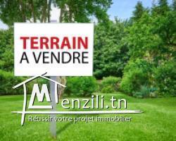 terrain à jardin el menzeh 3