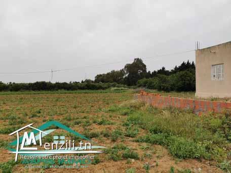 terrain 1323 m² à kerkouan kelibia