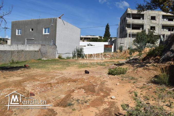 AV un terrain à KHarouba Hammamet nord