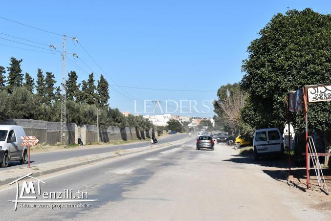 AV un terrain a Bir Bouragba Hammamet