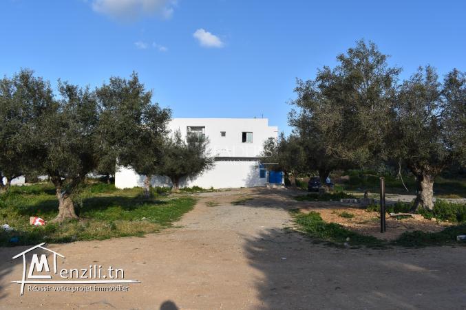 un superbe terrain viabilisé situé à Bir_Bouragba Hammamet .